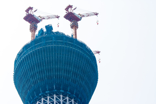 東京スカイツリー(建設中)の写真素材 [FYI01266239]