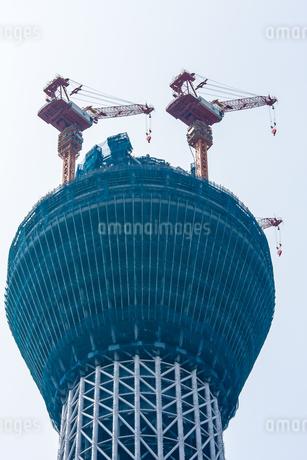 東京スカイツリー(建設中)の写真素材 [FYI01266240]