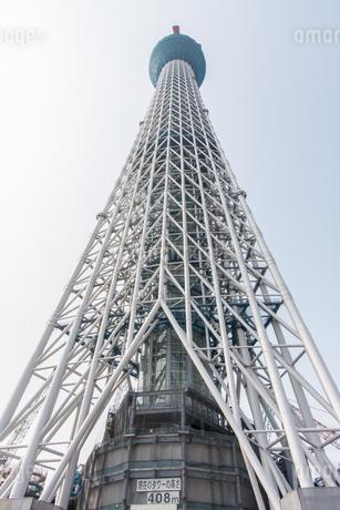 東京スカイツリー(建設中)の写真素材 [FYI01266243]