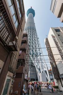 東京スカイツリー(建設中)の写真素材 [FYI01266246]