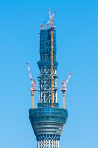 東京スカイツリー(建設中)の写真素材 [FYI01266247]