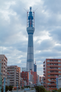 東京スカイツリー(建設中)の写真素材 [FYI01266250]