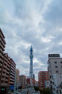 東京スカイツリー(建設中)の写真素材 [FYI01266251]