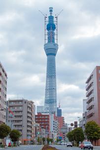 東京スカイツリー(建設中)の写真素材 [FYI01266252]