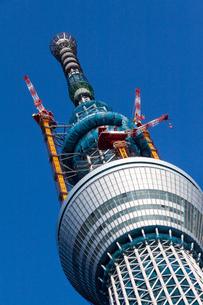 東京スカイツリー(建設中)の写真素材 [FYI01266260]