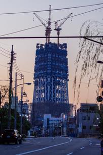 東京スカイツリー(建設中)の写真素材 [FYI01266267]