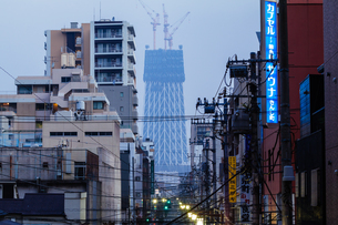 東京スカイツリー(建設中)の写真素材 [FYI01266269]