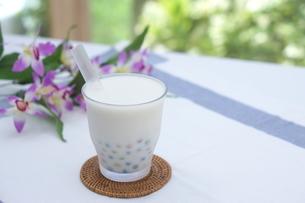 カラータピオカのココナッツミルクの写真素材 [FYI01266322]