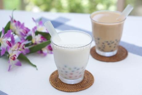 タピオカココナッツミルクとミルクティーの写真素材 [FYI01266333]