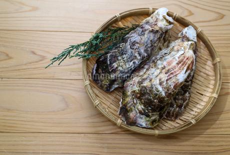 牡蠣の写真素材 [FYI01266411]