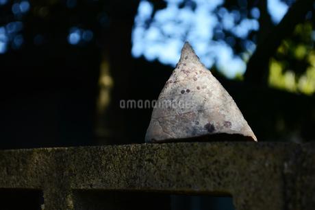 ブロック塀に置かれた貝殻の写真素材 [FYI01266494]