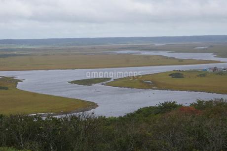 霧多布湿原の風景の写真素材 [FYI01266530]