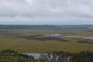 霧多布湿原の風景の写真素材 [FYI01266533]