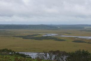 霧多布湿原の風景の写真素材 [FYI01266534]