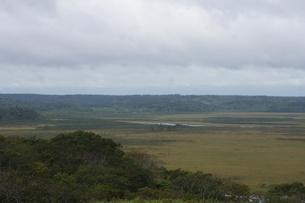 霧多布湿原の風景の写真素材 [FYI01266535]