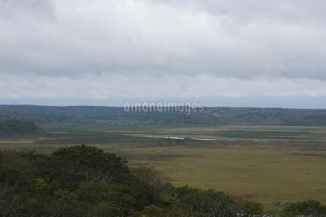 霧多布湿原の風景の写真素材 [FYI01266536]