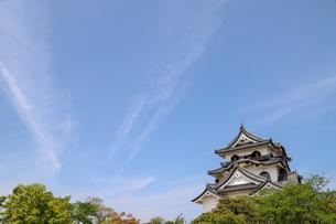 彦根城の写真素材 [FYI01266575]