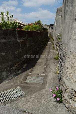 沖縄の古い石垣のある田舎の路地裏の写真素材 [FYI01266587]