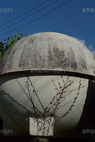 古い丸い水タンクにツタが這うの写真素材 [FYI01266655]
