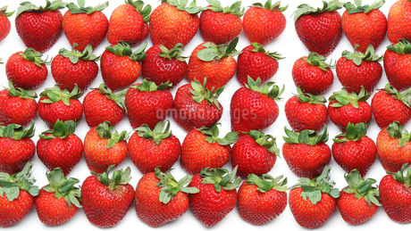 イチゴの写真素材 [FYI01266710]