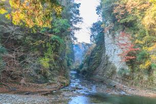 秋の養老渓谷の弘文洞跡の風景の写真素材 [FYI01266759]
