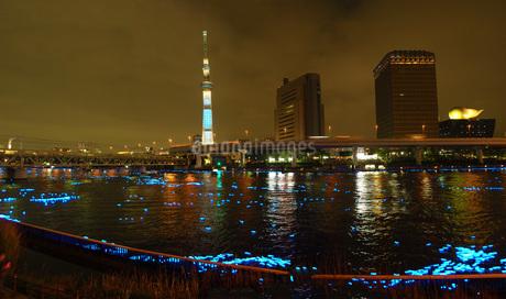 スカイツリーとイルミネーション(東京ホタル)カラーの写真素材 [FYI01266780]