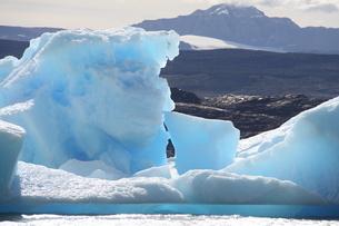 パタゴニアの氷河の写真素材 [FYI01266822]