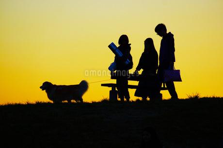 夕暮れの丘を犬を連れて歩く人の写真素材 [FYI01266881]