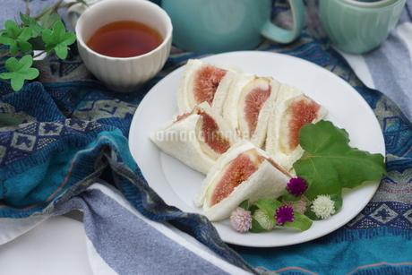 無花果のサンドイッチの写真素材 [FYI01266964]