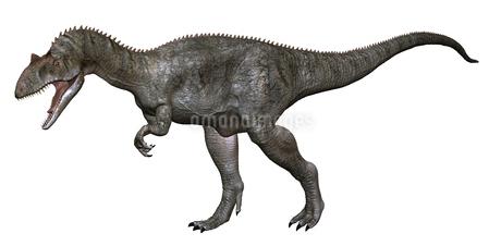 アロサウルスのイラスト素材 [FYI01267092]