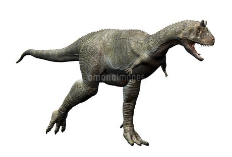 カルノタサウルスのイラスト素材 [FYI01267093]