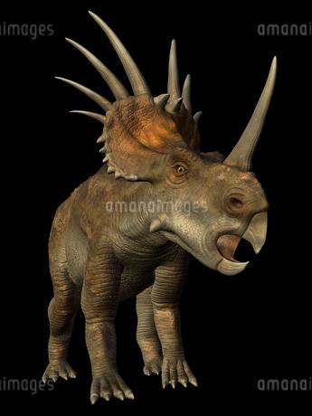 ステイラコサウルスのイラスト素材 [FYI01267097]