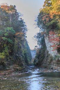 秋の養老渓谷の弘文洞跡の風景の写真素材 [FYI01267217]