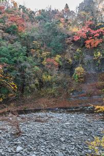 秋の養老渓谷の中瀬遊歩道から見た風景の写真素材 [FYI01267224]