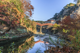 秋の養老渓谷の観音橋の風景の写真素材 [FYI01267229]