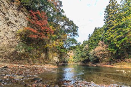 秋の養老渓谷の中瀬遊歩道からみた風景の写真素材 [FYI01267274]