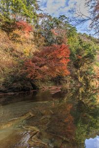 秋の養老渓谷の中瀬遊歩道からみた風景の写真素材 [FYI01267281]