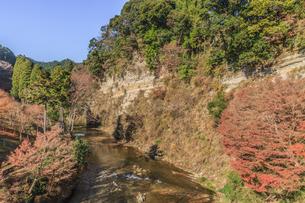 秋の奥養老橋から見た懸崖境の風景の写真素材 [FYI01267291]