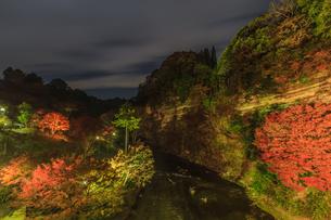 秋のライトアップされた懸崖境の風景の写真素材 [FYI01267293]