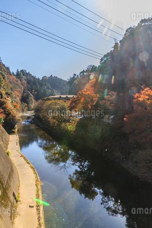 秋の養老渓谷の老川橋からみた風景の写真素材 [FYI01267301]