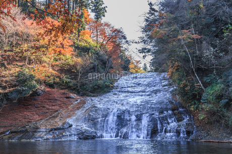 秋の養老渓谷の粟又の滝の風景の写真素材 [FYI01267368]