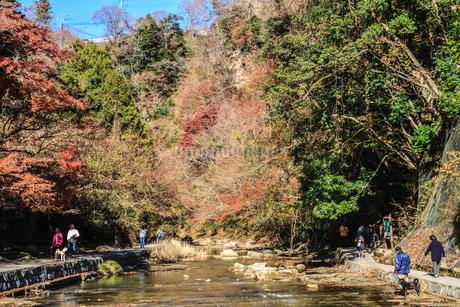 秋の養老渓谷の風景の写真素材 [FYI01267370]