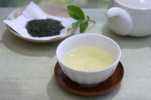 新茶の写真素材 [FYI01267378]