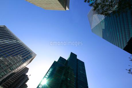 港区高層ビル群の写真素材 [FYI01267392]