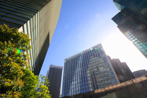 港区高層ビル群の写真素材 [FYI01267395]