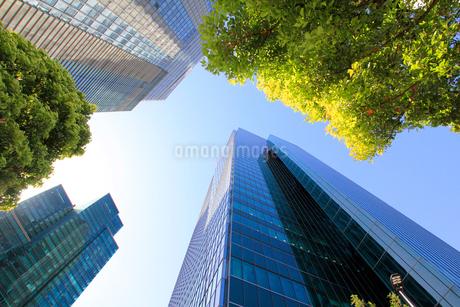 港区高層ビル群の写真素材 [FYI01267397]