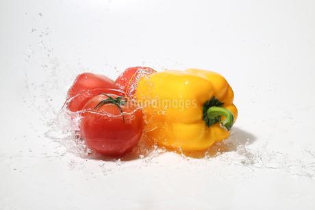 水しぶきを浴びるパプリカとトマトの写真素材 [FYI01267430]