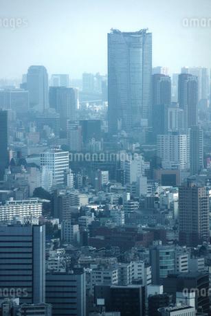 東京都庁の展望台からの景色の写真素材 [FYI01267456]
