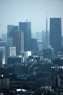 東京都庁の展望台からの景色の写真素材 [FYI01267457]