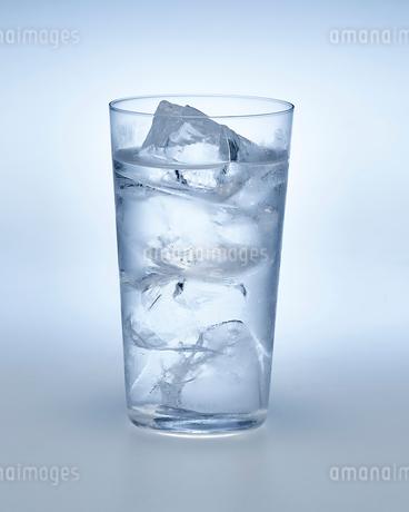 炭酸水の入ったグラスの写真素材 [FYI01267506]